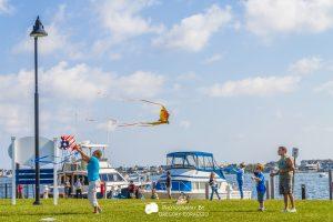 Traders Cove Kites