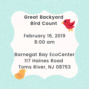 Great Backyard Bird Count @ Save Barnegat Bay