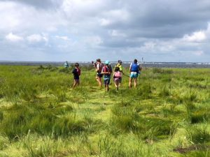Marsh Madness @ Barnegat Bay Marshes